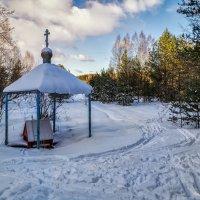 Колодец в лесу :: Андрей Дворников