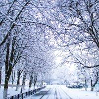 зимняя дорога :: Oksana Verkhoglyad