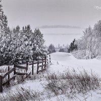 Зима! Любимая зима! :: Вячеслав Ложкин