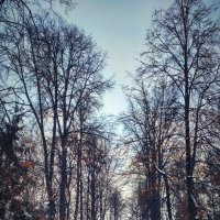 Парк Победы, Казань :: Parshutin