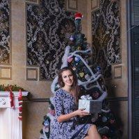 новый год ждём с нетерпением :: Евгения Cмирнова
