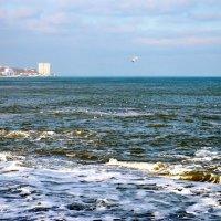 ПЛЕЩУТ ХОЛОДНЫЕ ВОЛНЫ :: Восточный