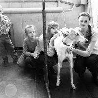 дети с собакой :: Владимир Бурдин