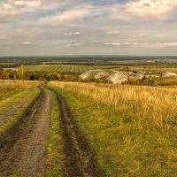 Осенний пейзаж :: Лариса Березуцкая