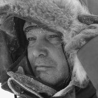Арктика :: Михаил Горюнов