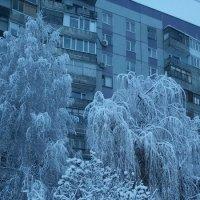 Зимнее :: Юрий Баланчук