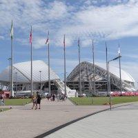 Олимпийский парк :: Ольга Куликовская /Olga  Kulikovskaya