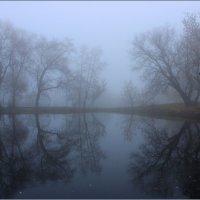 Туманное утро ноября :: Михаил Пахомов