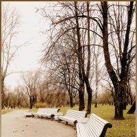 Парк Победы :: Galina Belugina
