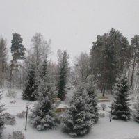 Красавица зима... :: Valentina