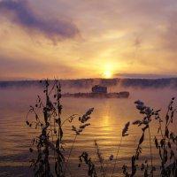 Солнце зимнее вставало. :: Валентина Налетова