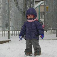 Первый раз пешком по снегу!)) :: Елена Карманчикова