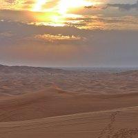 Пустыня вечером. :: Виталий Селиванов