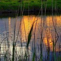 Закат купается в реке. :: владимир