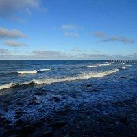 Ноябрьский морской пейзаж :: Маргарита Батырева