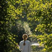 Мечтать на природе замечательно :: Роман Репин
