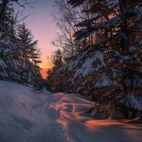 По снегоходным трассам. :: Артём Удодов