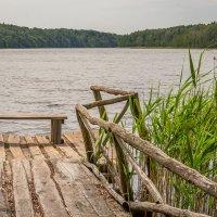 Озеро Синявинское :: Игорь Вишняков