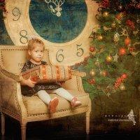 Девочка с подарком :: николай смолянкин