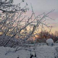 Мороз и солнце день чудесный! :: Екатерина Краева