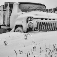 Белый плен. :: Сергей Резниченко