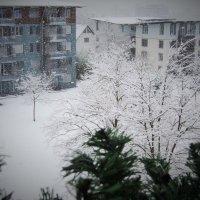 первый снег :: kuta75 оля оля