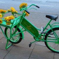 Велосипед с цветами :: Nina Yudicheva