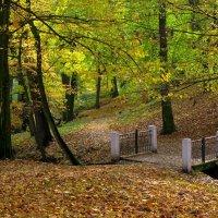 В осеннем парке :: Сергей Карачин