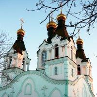 Свято-Троицкий храм :: Надежда