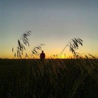 Летом,на рассвете :: наталия