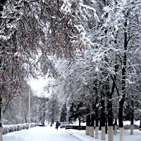 Пришла красавица зима.. :: Елена Семигина