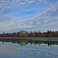 Городское озеро в декабре... :: Galina Dzubina
