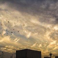Небо :: Kristina Suvorova
