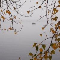 Рыбак в тумане :: Наталья Гринченко