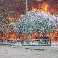 Ночная прогулка :: Сергей Тарабара