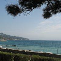 Ялта. Синее Черное  море :: Елена Павлова (Смолова)