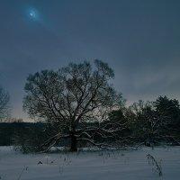 Ночь.Зима. :: Ард Прохоров