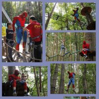 Жизнь Человека-паука :: Елена Бушуева