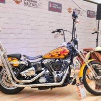 Harley-Davidson :: Константин Поляков