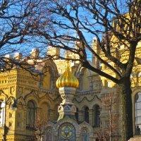 Церковь во имя Успения Пресвятой Богородицы на Васильевском острове :: Елена