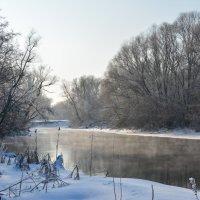 Зимушка Зима :: Настя Масловская