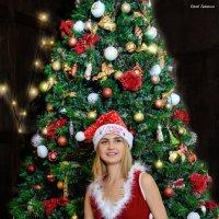 Holidays are coming... :: Сергей Гутерман
