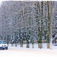 И падал снег … :: Валентина ツ ღ✿ღ