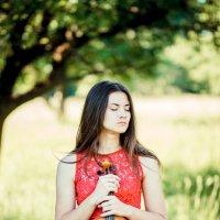 Девушка со скрипкой :: Слава Наумов