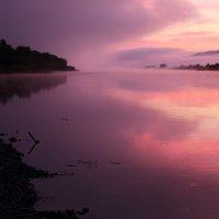 Розовый туман. :: Александр Киргизов