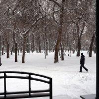 Зима пришла... :: София