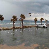 Зима в Израиле :: mikhail
