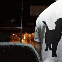 Трудно найти чёрную кошку в тёмной комнате, особенно если её там нет... :: Кай-8 (Ярослав) Забелин