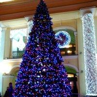 Новогодняя елка у Гостинного Двора. (Санкт-Петербург) :: Светлана Калмыкова