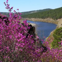 Вид на реку Ингода со скал урочища Сухотино в г.Чите. :: Александр Киргизов